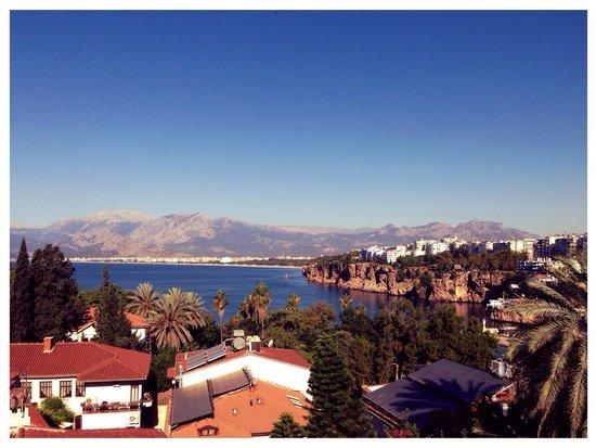 Villa Tulipan : Morning view