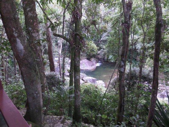 Pousada do Rio: Piscina natural, vista do chalé