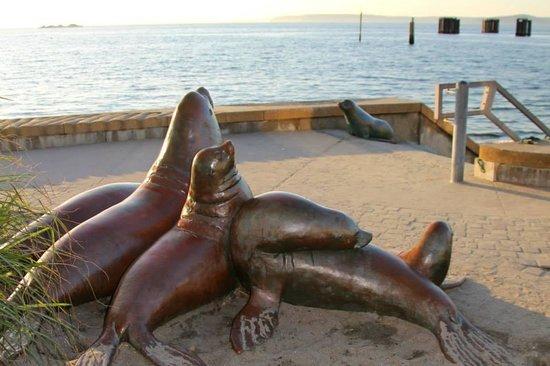 "Best Western Plus Edmonds Harbor Inn : Seal sculptures at ""beach"" near hotel"