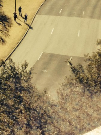 The Sixth Floor Museum/Texas School Book Depository: Crosses on the road!
