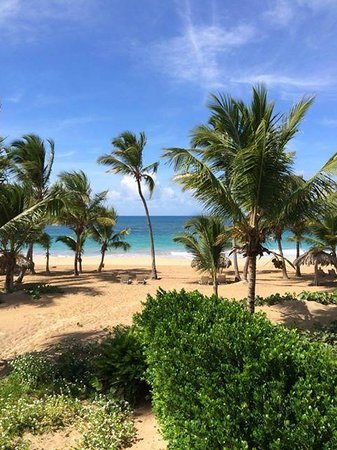 Sivory Punta Cana Boutique Hotel: View from Oceanfront Suite upon arrival...WOW
