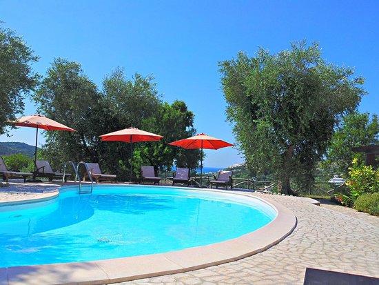 Parco dei Limoni: La piscina