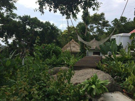Aminjirah Resort: Hotel