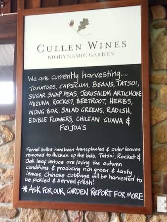 Cullen Wines - Cullen Restaurant: Special board of the season
