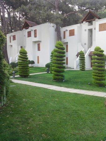 Club Med Palmiye: Les allées et les chambres