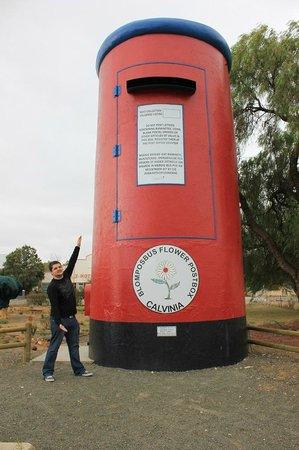 The Big Postbox in Calvinia