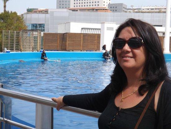 Ciudad de las Artes y las Ciencias: Con los delfines