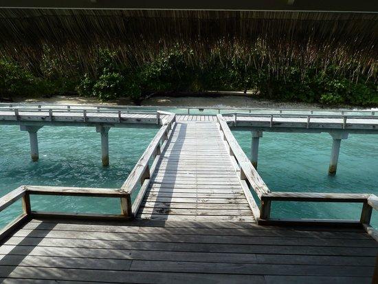 Kuramathi Island Resort: Water villa con jacuzzi