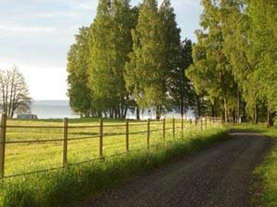 Breviks Camping: Vägen mot sjön