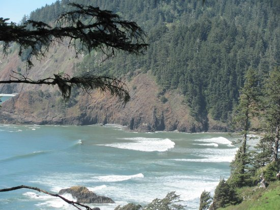 Ecola State Park: views from one of the  stops on the hike to that beach