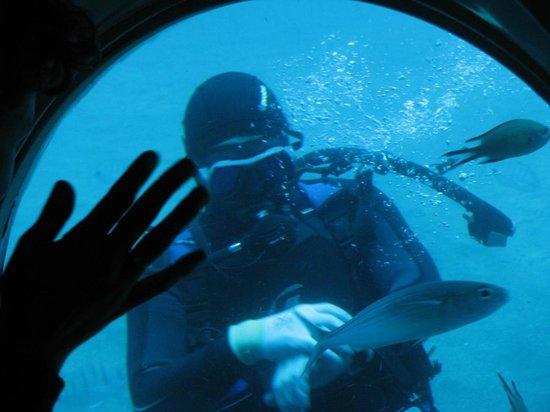 Submarine Safaris Lanzarote : A diver