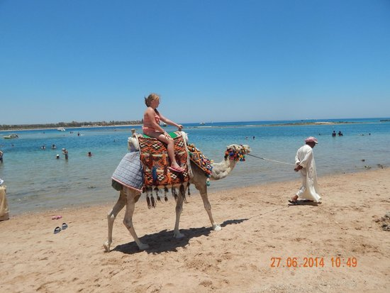 Jaz Makadi Saraya Resort: Camel ride along the main beach