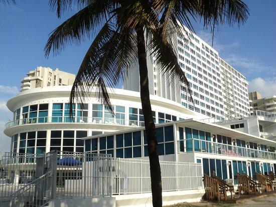 Design Suites Miami Beach: отель
