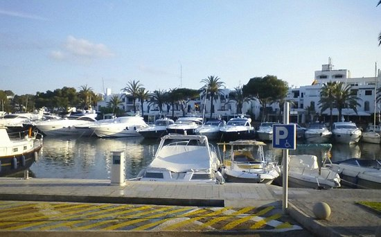 Aparthotel Ferrera Blanca: marina at Cala Dor