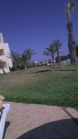 Omar Khayam Club: Garden view