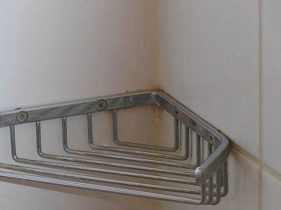 Hotel Birke: Seifenhalter in der Dusche