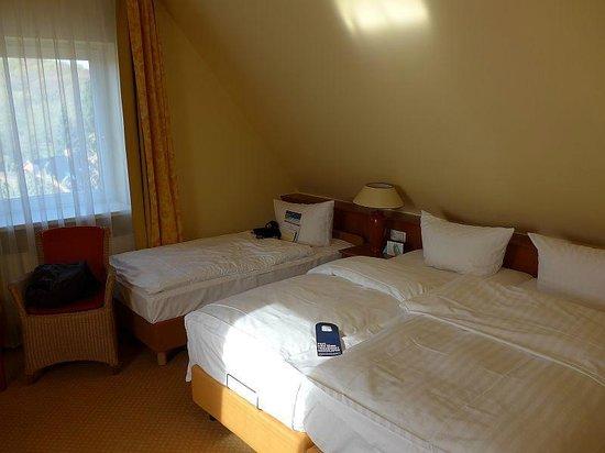 Hotel Birke: Zimmer mit Dachschräge