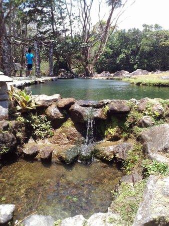 El Nispero Zoo and Botanical Garden : Valle de Anton Zoo