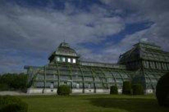 Schloss Schönbrunn: оранжерея