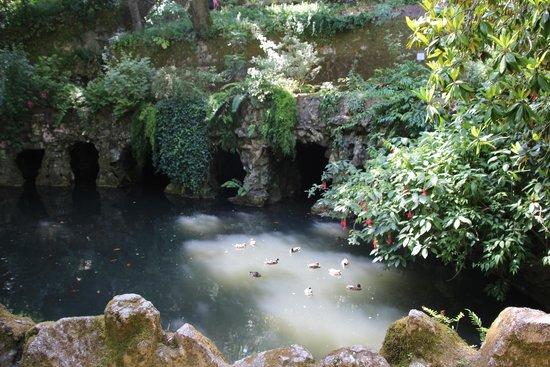 Quinta da Regaleira: The labyrinth grotto
