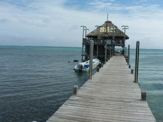 Palapa Bar and Grill: Worth the bike ride...