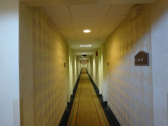 Ramada Newark/Wilmington: Коридор