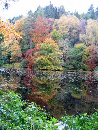 Pitlochry Festival Theatre : Autumn near Pitlochry