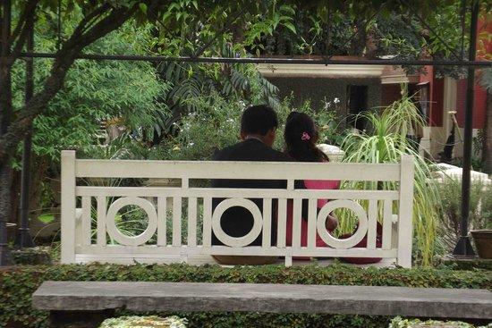 Garden of Dreams : romantic