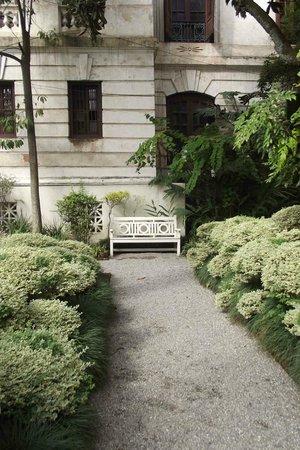 Garden of Dreams : exotic flowers