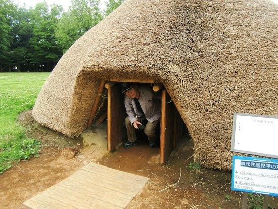 Mizuko Kaizuka Park: 竪穴住居の入口・頭をぶつけないように!