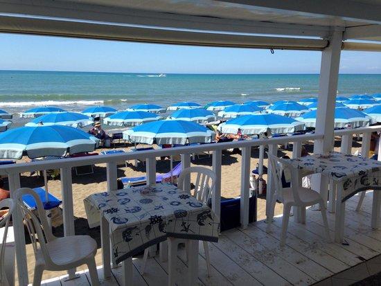 Bagno Balena Castiglione Della Pescaia Prezzi : Ottima cucina grande jacopo recensioni su bagno nettuno