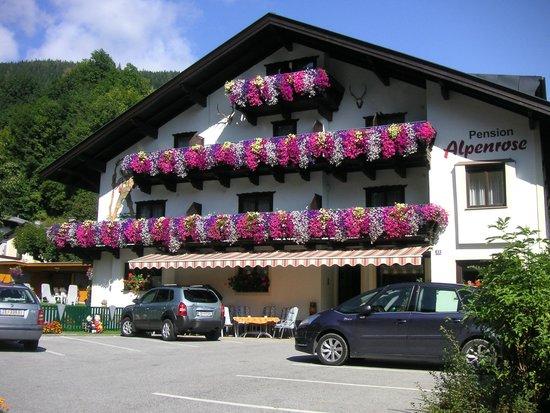 Pension Alpenrose: Sommer Hausansicht