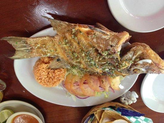 El Cejas : The Fish !!