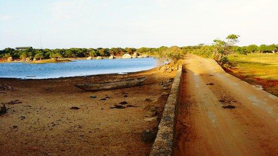 Cinnamon Wild Yala: Road to Cinnamon Wild