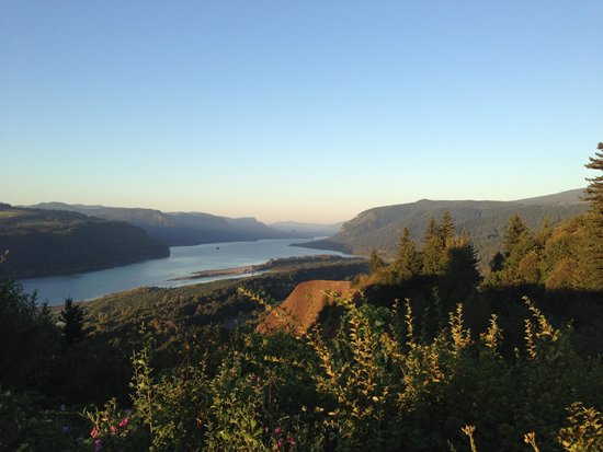 Columbia River Gorge: View from above
