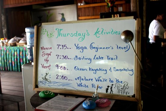 Jungle Bay, Dominica: Activities for the day