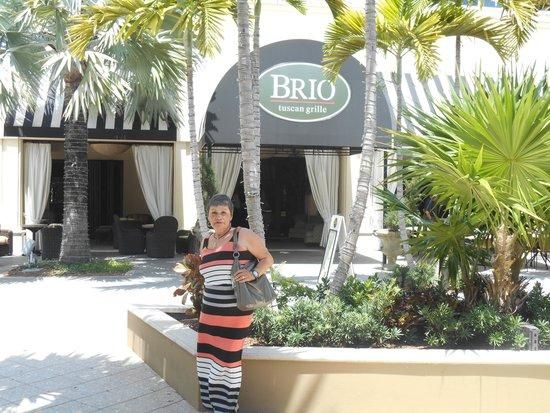 BRIO Tuscan Grille: SATISFIED N.Y. GUEST
