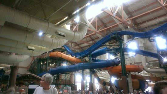 Great Wolf Lodge: Tube slides