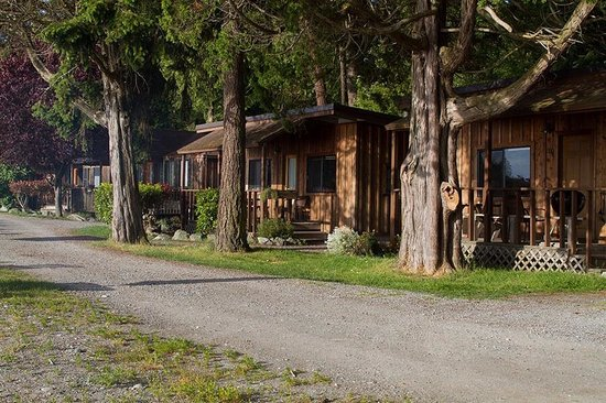 West Beach Resort: Cabins are tucked into a hillside, neighbors on each side.