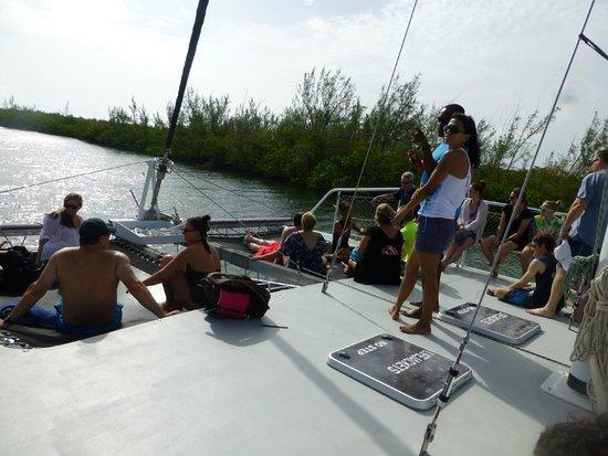 Allura Catamaran: Everyone chilling, just started heading to Stingray City.