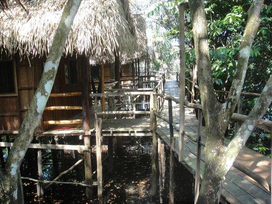 Tariri Amazon Lodge: Our room