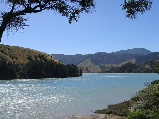 Cable bay Cafe: Cable Bay