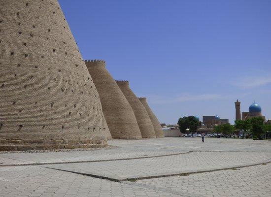 Ark Fortress: les remparts