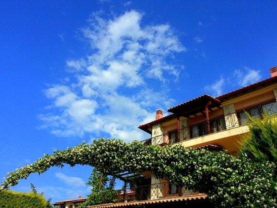 Akritas Ef Zin Villas & Suites: виллы наверху