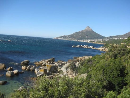 City Sightseeing: CAMPS BAY FROM THE BUS