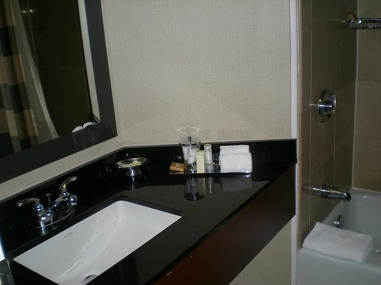 Hyatt Regency Montreal: Bathroom