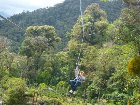 Boquete Tree Trek: Haciendo Canopy