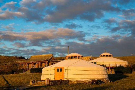 The Three Camel Lodge's Dino House and gers