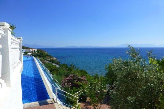 Club Marvy: Panorama-Pool/Meer
