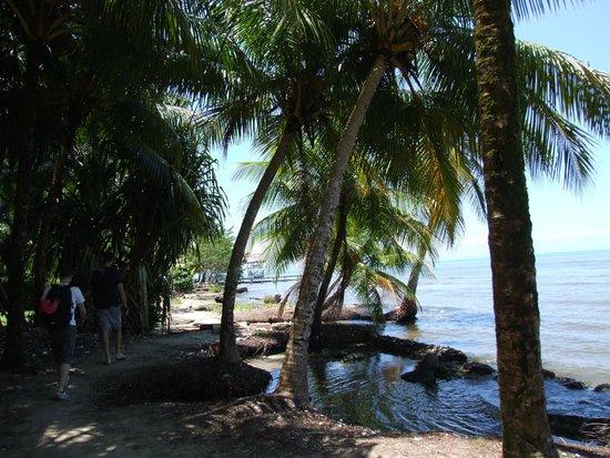 Seven Altars : walk through the beach to the path